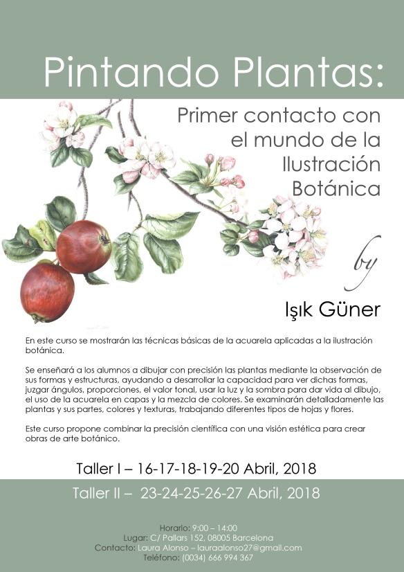 Taller de ilustración botánica con Isik Güner